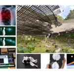 MSE research is highlighted in UCF's 10 ten research stories