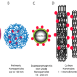 Seed funding for Seal group for nano drug delivery in collaboration with College of Medicine